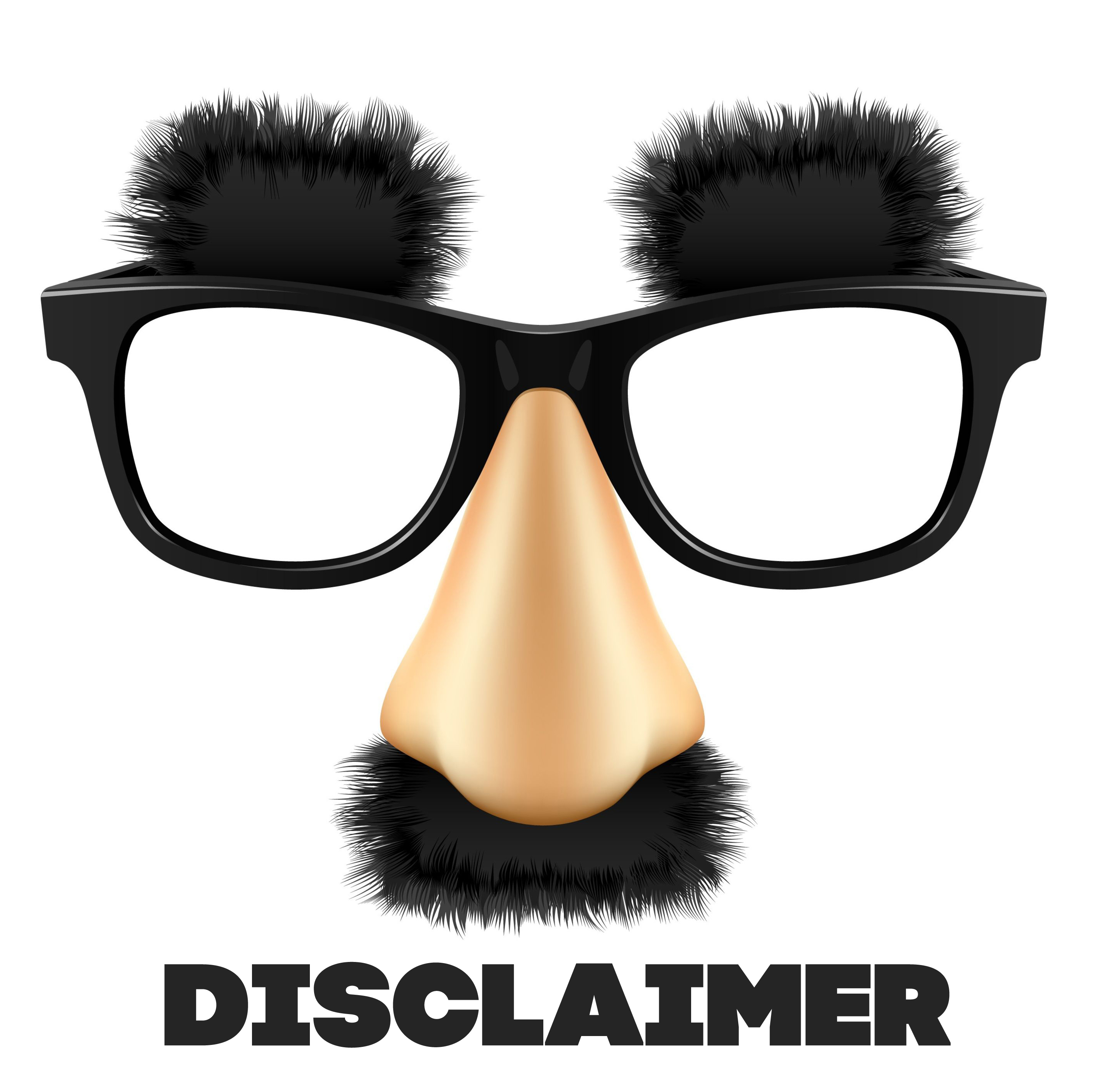 how to write a disclaimer for a blog